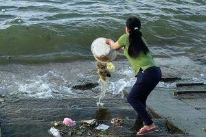 Ngỡ ngàng khi người dân đổ rác thẳng ra biển ở Sa Kỳ