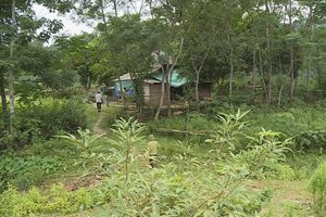 Vườn Quốc gia Vũ Quang (Hà Tĩnh): Bảo tồn rừng, lại phải 'bảo tồn' thêm 36 hộ dân sống xâm canh bên trong
