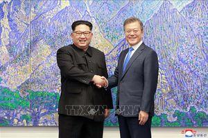 Các tổ chức dân sự hai miền Triều Tiên thúc đẩy thực hiện Tuyên bố Panmunjom