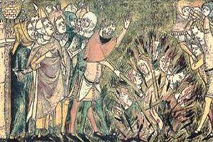 Những hiểu lầm cực tai hại về đại dịch Cái chết Đen