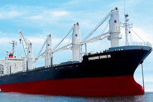 Vận tải biển Phương Đông 6 tháng lỗ 284 tỷ đồng