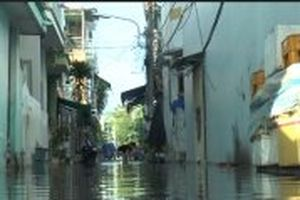 Lũ gây ngập nhiều nơi ở huyện Lai Vung, Đồng Tháp