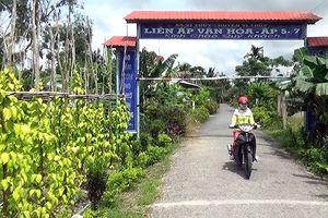 Hậu Giang: Xúc tiến đăng ký thương hiệu cho làng trầu Vị Thủy
