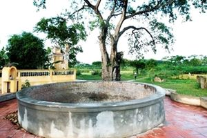 Cái giếng – hồn xưa đất nước