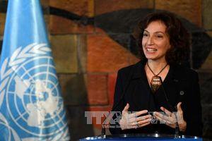 UNESCO nỗ lực khôi phục uy tín sau khi Mỹ rút khỏi tổ chức