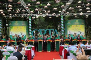 Sôi động nhiều chương trình văn hóa tại 'Không gian Vietnam Airlines'
