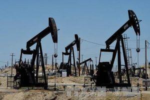 Giá dầu tăng 0,5% trên thị trường châu Á