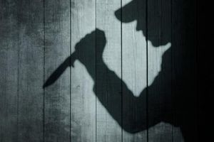 Họp báo thông tin về vụ án chồng giết vợ tại Cao Bằng