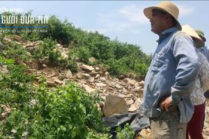 Hòa Bình: Dân kêu khổ, tỉnh, huyện 'bó tay' với núi rác trái phép
