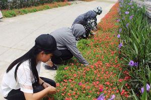Lan tỏa những mô hình 'Dân vận khéo' ở huyện Quảng Xương