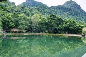 Vườn Quốc gia Cát Bà: Hồ Hới - vẻ đẹp quyến rũ, đắm say lòng người
