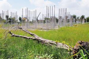 Dự án khu dân cư hơn 30 ha bị 'đắp chiếu'
