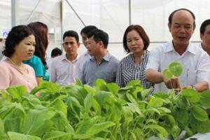 Đại hội Hội ND TP.Hà Nội: Phát triển kinh tế gắn với xây dựng tổ chức Hội