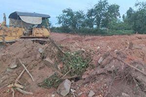 Chính quyền muốn Nguyễn Phước tộc tự nguyện dời mộ vợ vua Tự Đức