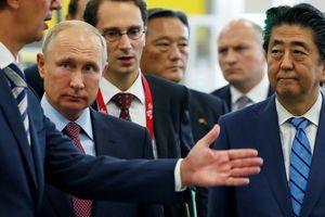Nhật – Nga thúc đẩy hợp tác kinh tế trên nhóm đảo tranh chấp