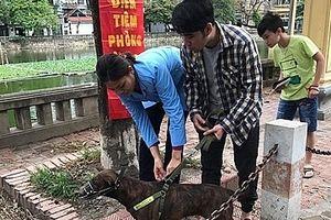 Hà Nội: Tăng cường công tác quản lý nuôi, giết mổ, kinh doanh chó, mèo