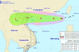Áp thấp nhiệt đới phát triển thành bão số 5 trên biển Đông