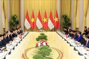 Chủ tịch nước Trần Đại Quang hội đàm với Tổng thống Indonesia Joko Widodo
