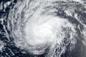 Nhiều bang của Mỹ ban bố tình trạng khẩn cấp do siêu bão Florence