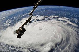 Clip: Cận cảnh gió xoáy 200km/h tại tâm bão cấp 4 Florence