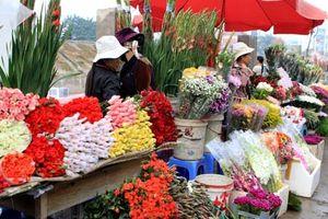 Chợ nông sản Đà Lạt: Chỉ kinh doanh hàng hóa địa phương