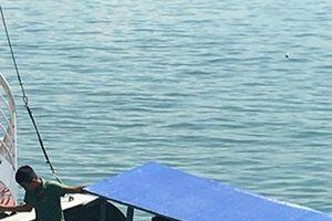 Gian nan xử lý tàu bán hàng rong lừa du khách và tấn công tàu du lịch vịnh Hạ Long