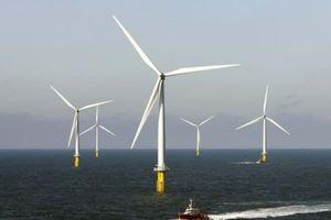 Giá mua điện gió tăng lên mức 8,5 UScents/kWh