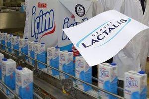 Cảnh báo thêm 99 lô sữa nhập khẩu nghi nhiễm khuẩn salmonella