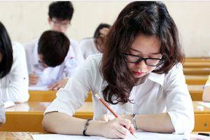 Đề thi tham khảo môn Tiếng Anh: Nội dung hay, gần gũi, quen thuộc
