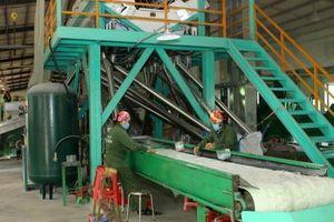 Kim ngạch xuất khẩu nhựa dự báo tăng trưởng 12-15%