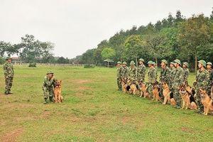 Đồng đội đặc biệt của lính biên phòng
