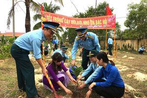 Sư đoàn 375 ra quân 'Tết trồng cây'