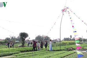 Quảng Nam: Rộn ràng lễ hội cầu Bông