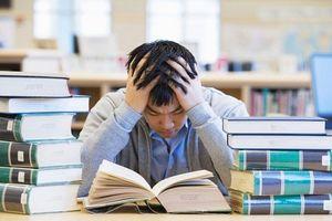Nếu việc học của bạn mãi không khởi sắc, có thể do bạn đã mắc những sai lầm sau