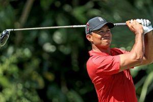 Vì Master, 'siêu hổ' Tiger Woods cày ải hết công suất