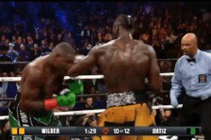 Hạ knock-out 'King Kong' Ortiz, Wilder lên tiếng thách thức Joshua