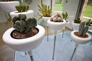 10 góc vườn mini siêu đẹp cho mọi gia đình