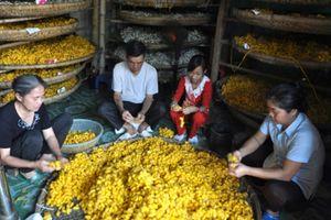 Hồi sinh nghề dệt nhiễu Hồng Đô