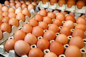 Thưởng nhân viên bằng trứng vì siêu lạm phát ở Venezuela