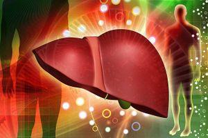 Mùa nắng, ăn uống thế nào để bảo vệ gan?