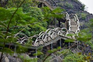 Cầu xuyên lõi di sản Tràng An đi ngược cam kết của Việt Nam với UNESCO