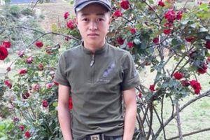 Vụ mất trộm cây hoa hồng giá 30 triệu ở Sơn La, công an xã nói gì?