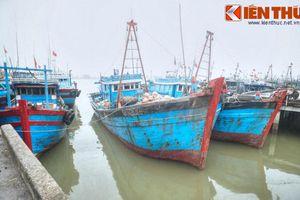 Bến cảng lịch sử gắn với sự nghiệp nguyên Thủ tướng Phan Văn Khải
