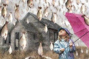 Khó tin những cơn mưa cá nổi tiếng lịch sử