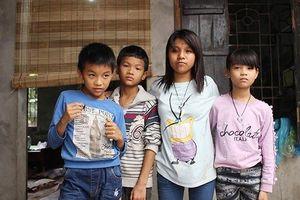 Cô gái 9X Hà Nội tảo tần nuôi đàn em nhỏ mồ côi