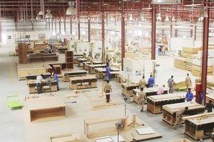 Việt Nam là trung tâm chế biến gỗ của Châu Á