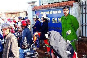 Giám đốc công ty nông sản 'vỡ nợ' tại Gia Lai làm đơn xin vắng mặt
