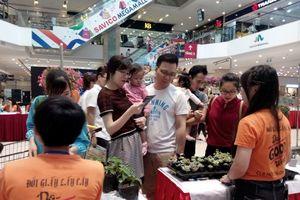 Những người trẻ mang cây xanh đến với cộng đồng