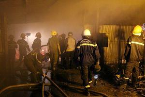 Trại dế thương phẩm gần 1.000 m2 bị 'bà hỏa' thiêu rụi trong đêm