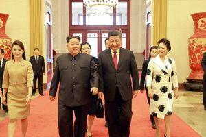 Chiêm ngưỡng hình ảnh tỏa sáng của Đệ nhất phu nhân xinh đẹp của Triều Tiên